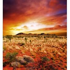 AUSTRALIAN LANDSCAPE  (MS-3-0050)