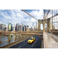 NEW YORK CITY  (MS-5-0004)